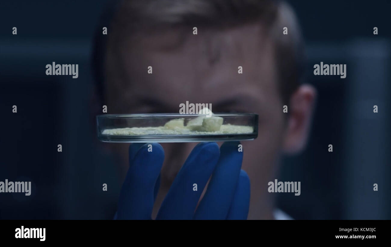 Técnico de laboratorio de inyectar un líquido en una misma microplaca. El experimento científico, la placa de Petri. científico sosteniendo una placa de Petri con células de virus. Virus concepto. Laboratorio, biología, placa de Petri. Foto de stock