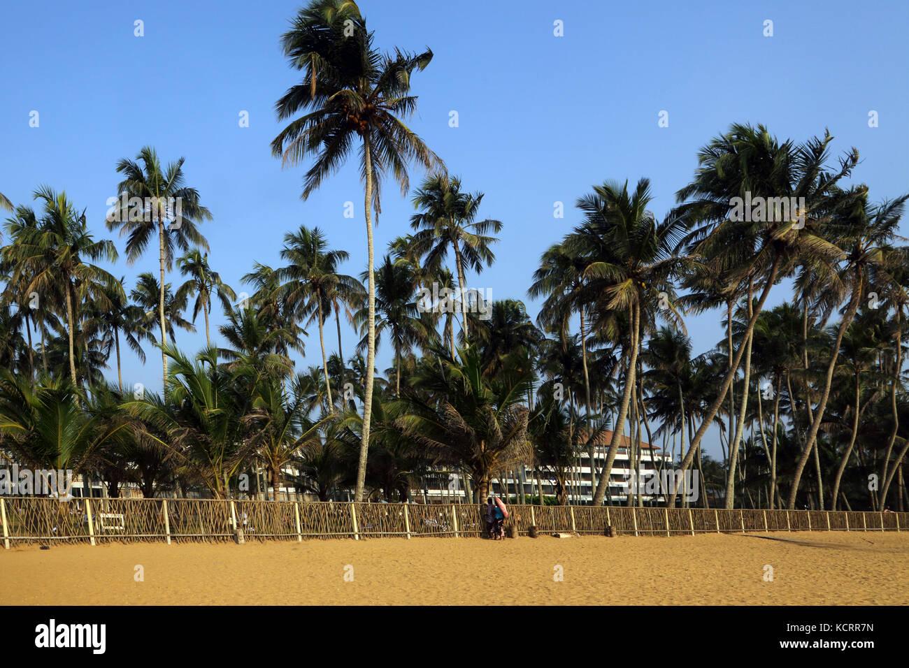 Blue Water Hotel Wadduwa en la provincia occidental de Sri Lanka Beach Imagen De Stock