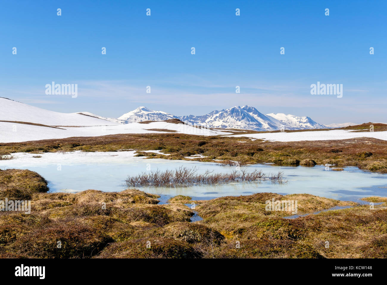 Estanque congelado en el Ártico alto paisaje de tundra en el monte Storsteinen en verano. Tromso, Troms, Noruega, Escandinavia Foto de stock
