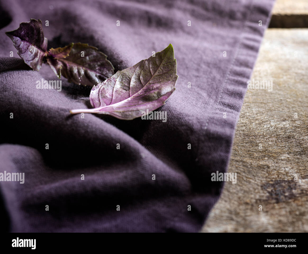 Detalle shot de hojas de albahaca morada en una ropa de color purpura y superficie de madera rústica. Foto de stock