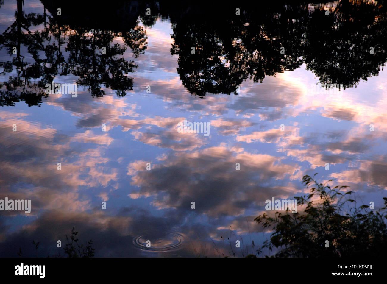 Los reflejos de las nubes en la noche del sol sobre el río Neckar, Stuttgart, Baden-Würtenberg, Alemania Foto de stock