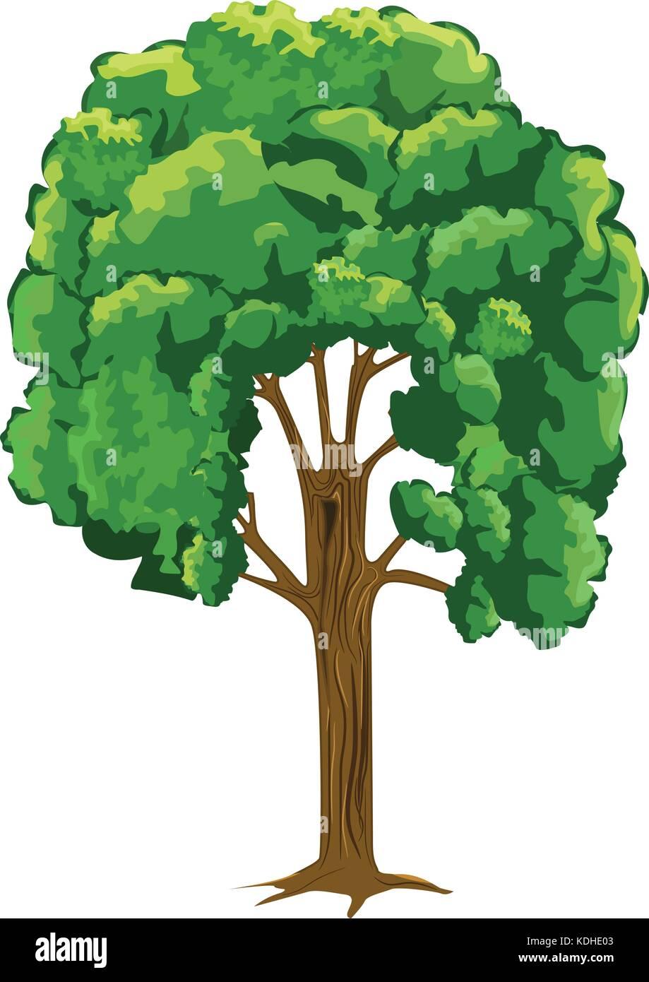 Árbol con estilo de dibujos animados, pero con más detalle. planas y vector  de color sólido Imagen Vector de stock - Alamy