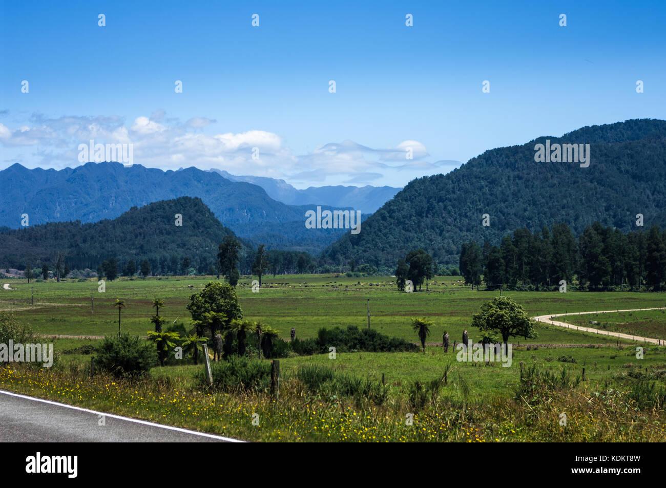 Inangahua, Costa oeste • Nueva Zelanda ruta Inanguahua Foto de stock