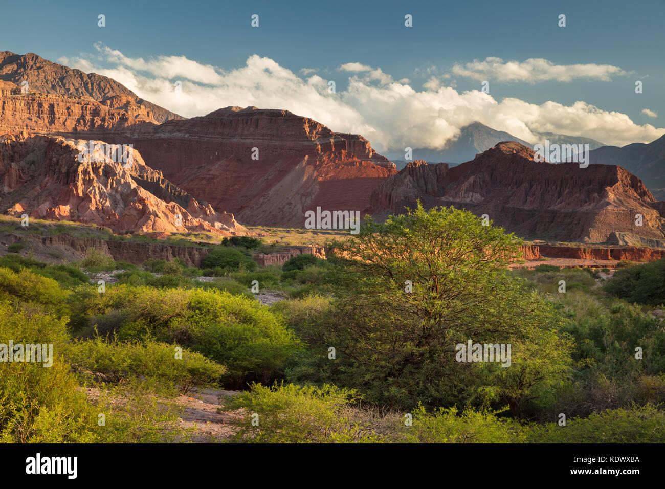 Tla Quebrada de la caracolas, Valles Calchaquíes, Provincia de Salta, Argentina Imagen De Stock