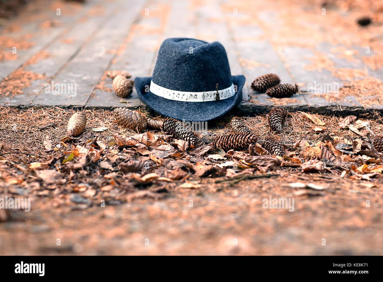 Vintage clásico dama azul y gris oscuro en el sombrero de un piso de madera  y 6deb6c0ac4f2