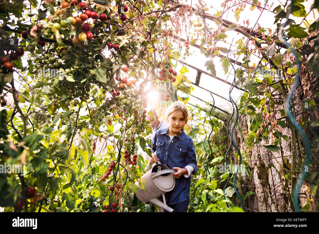 La pequeña niña la jardinería en el jardín posterior. Imagen De Stock