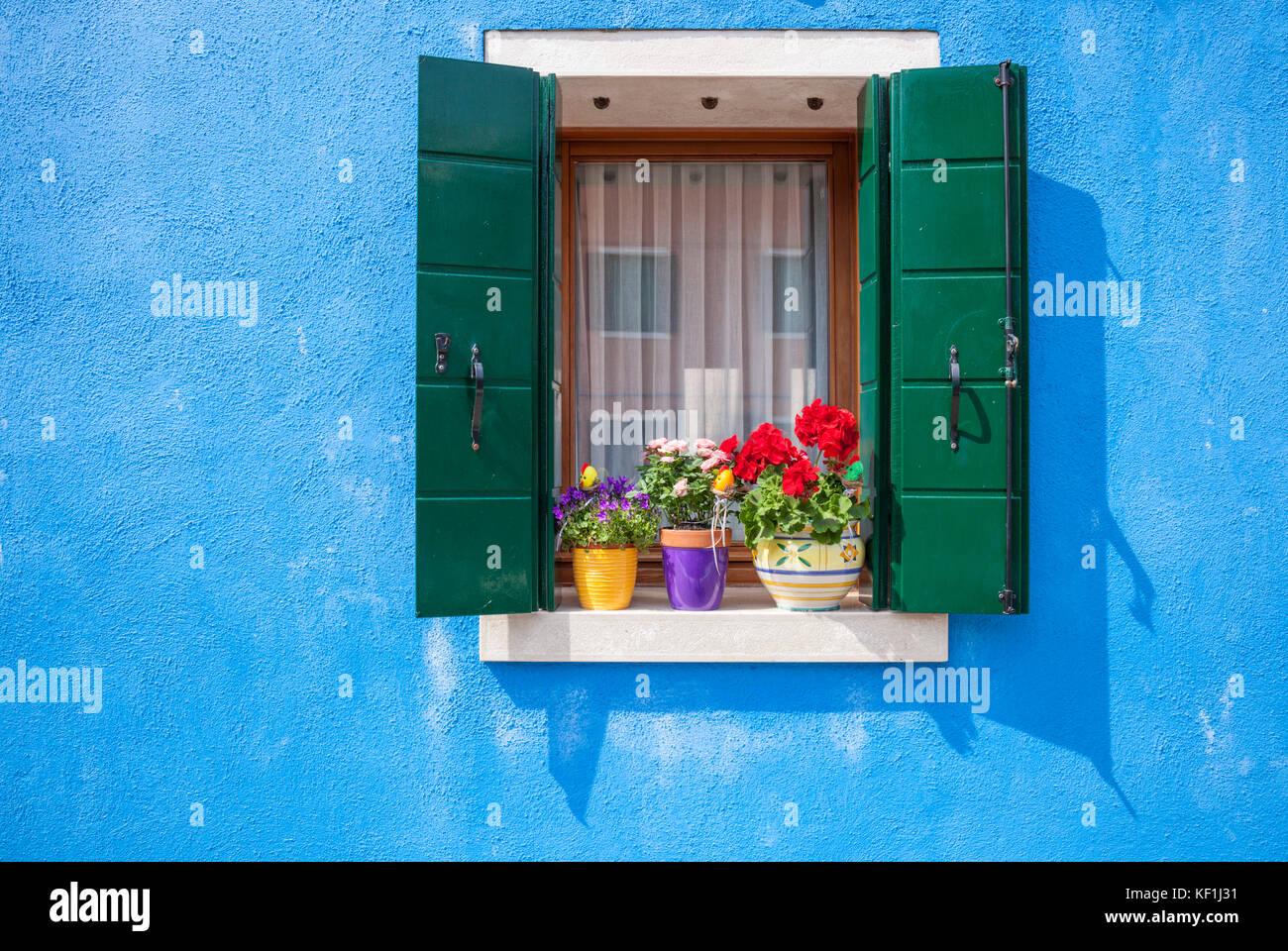Venecia Italia Venecia paredes azules ventana con persianas verdes y macetas de flores Burano Italia Europa ue Foto de stock