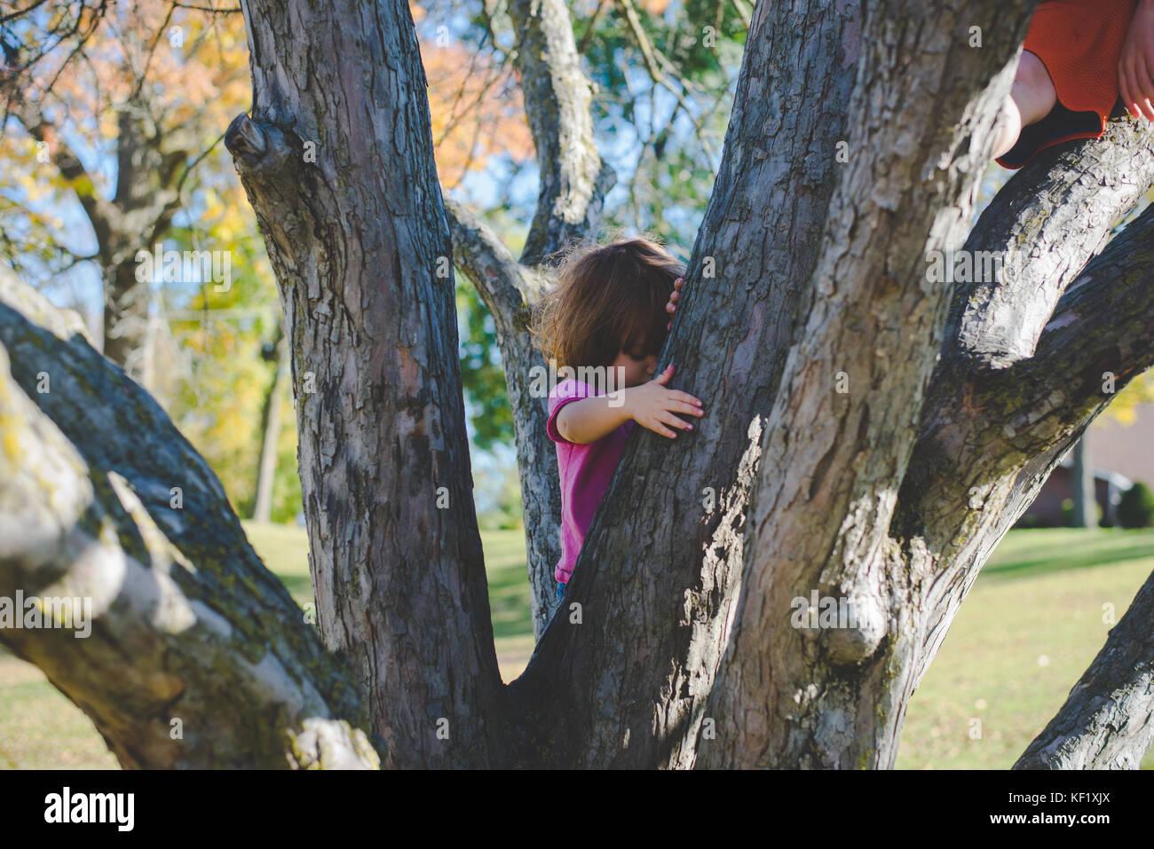Hijo trepar un árbol Imagen De Stock