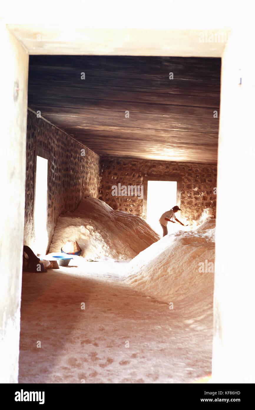 Mauricio, mico, un trastero lleno de montones de sal que está listo para ser transportado, tamarin salinas Imagen De Stock