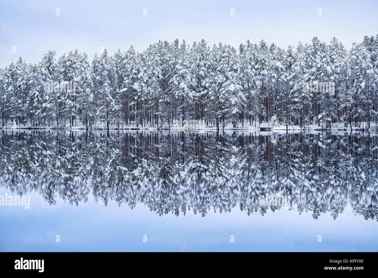 El paisaje con el lago reflexión y nieve en invierno por la noche Imagen De Stock