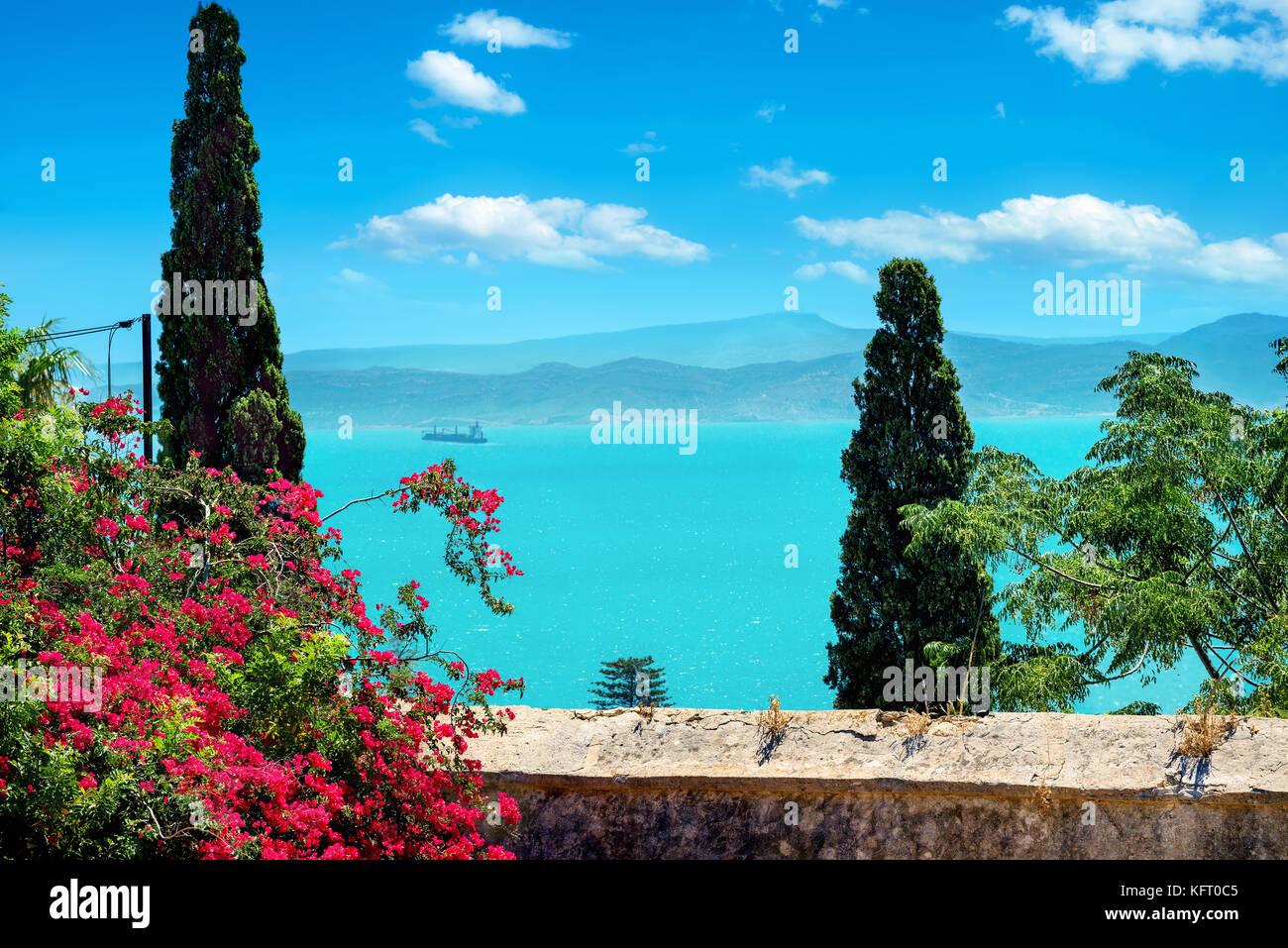 Hermosa vista del jardín de Túnez Cartago bay. Túnez, norte de África Imagen De Stock