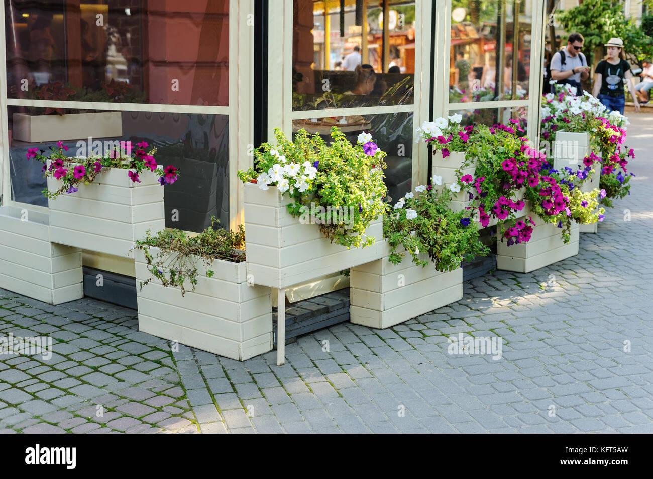 Flores En Los Cuadros La Terraza Del Restaurante Está