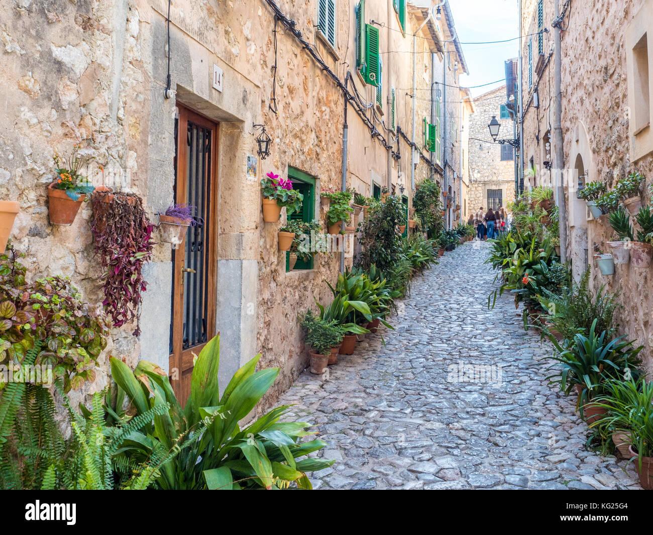 Calle con flores, valdemossa, Mallorca, Islas Baleares, España, Mediterráneo, Europa Imagen De Stock