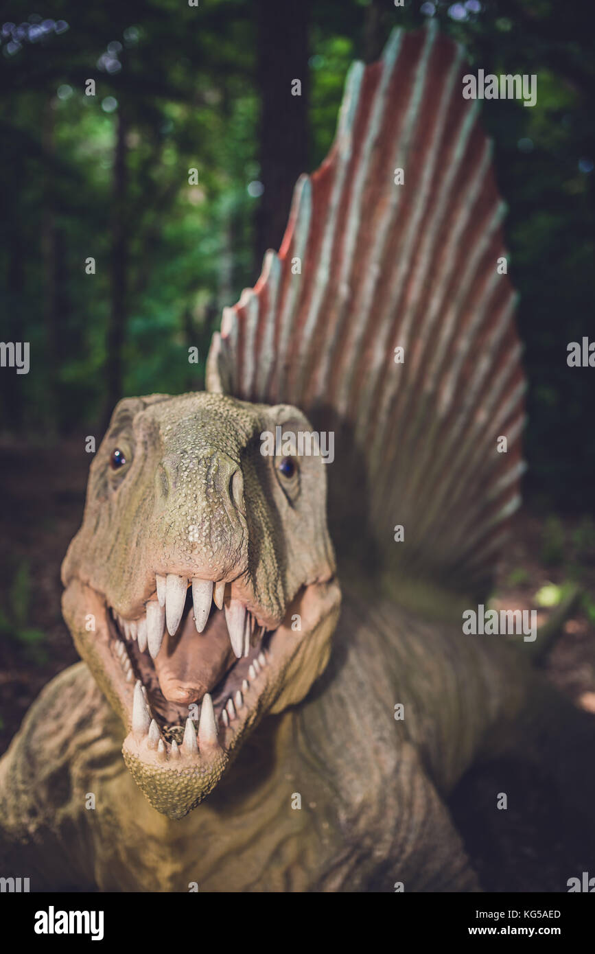 Spinosaurus Statue Lost World Jurassic Fotos E Imagenes De Stock Alamy Enseguida, el dinosaurio cautivó a los expertos, ya que parecía estar formado a partir de varios animales diferentes, contó entusiasmado paul barrett. https www alamy es foto solec kujawski polonia agosto 2017 vida spinosaurus tamano dinosaurio estatua en un bosque 164845813 html