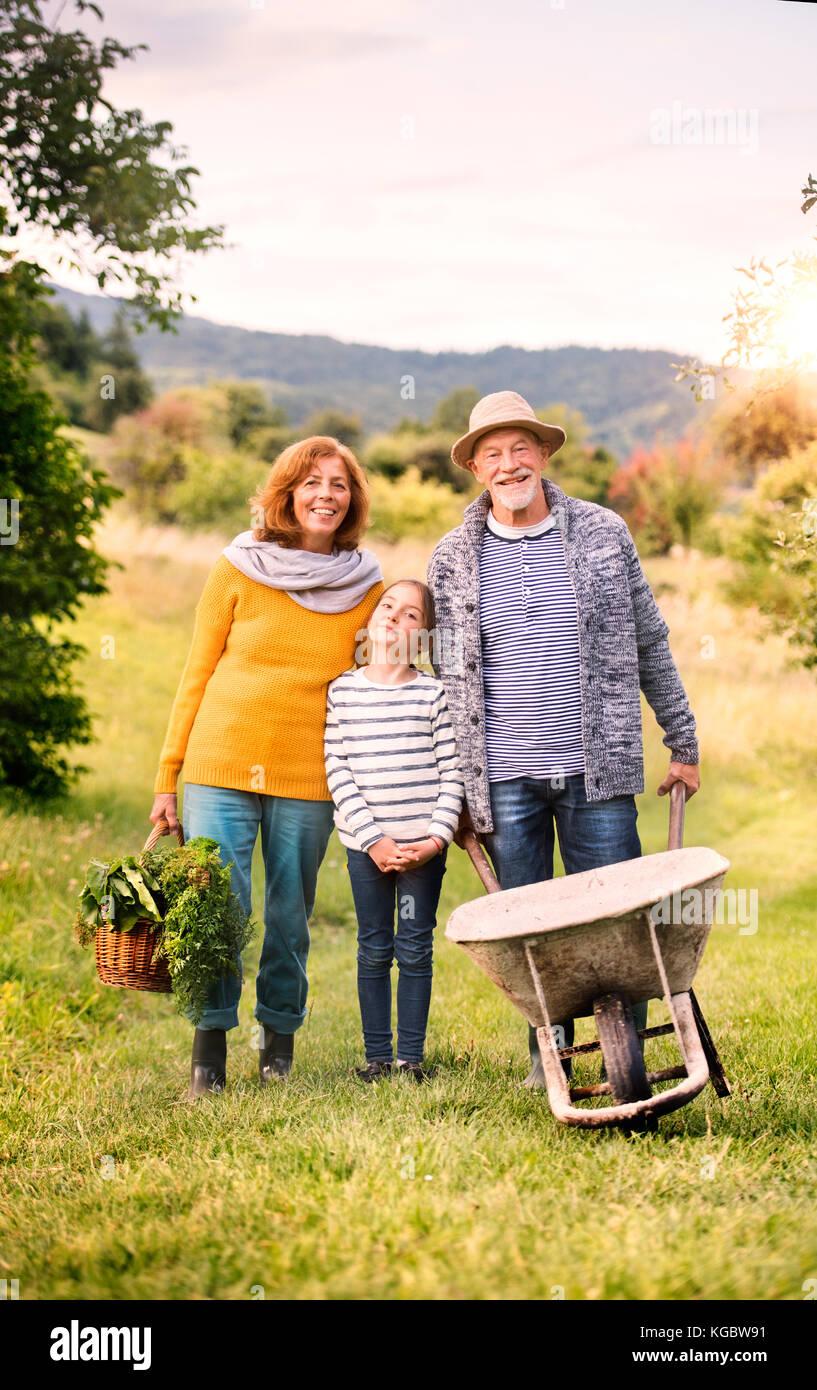 Las parejas ancianas con nieta de jardinería en el patio jardín Imagen De Stock
