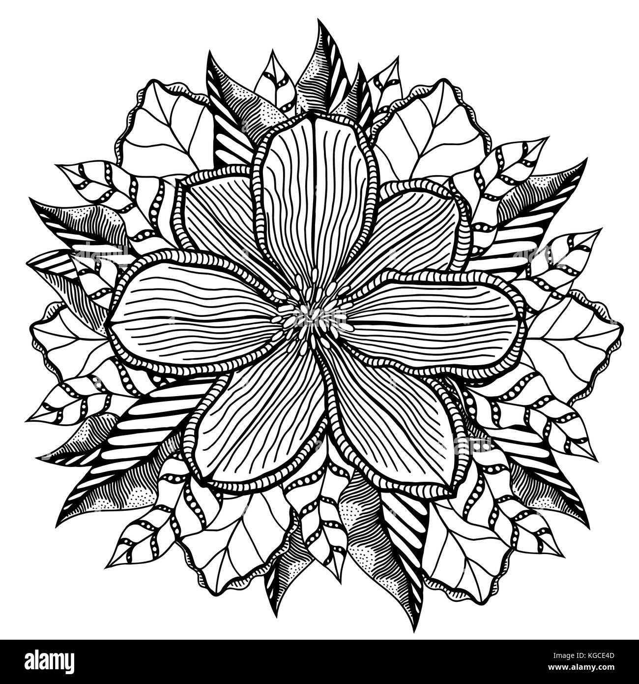 Flor sobre un fondo blanco en una líneas negras. doodle imagen ...