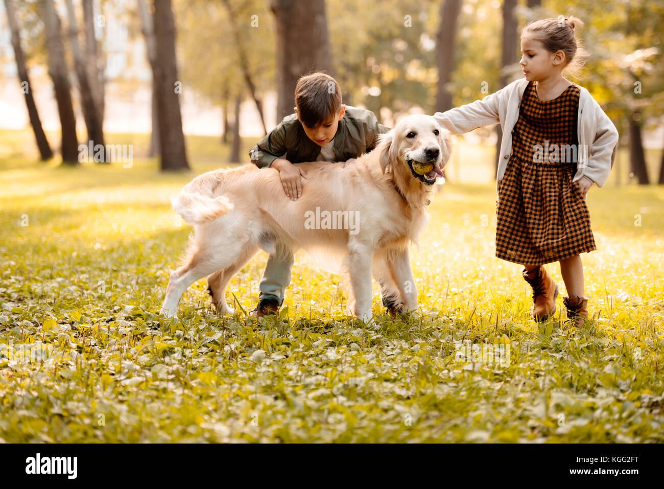Niños acariciándole perro Imagen De Stock