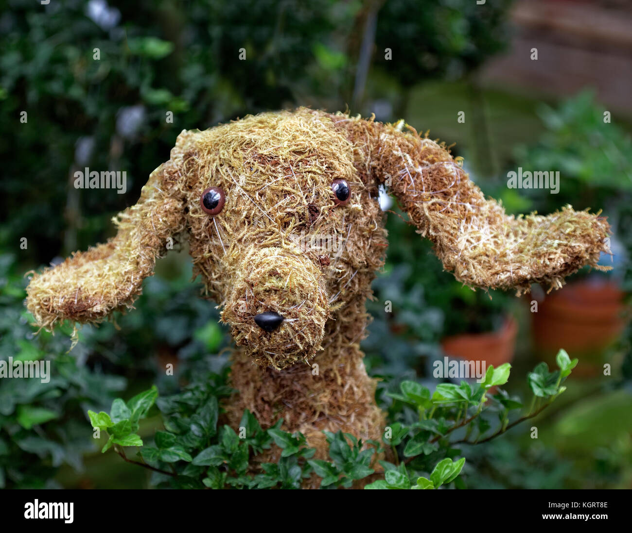 Topiary Dog Imágenes De Stock & Topiary Dog Fotos De Stock - Alamy