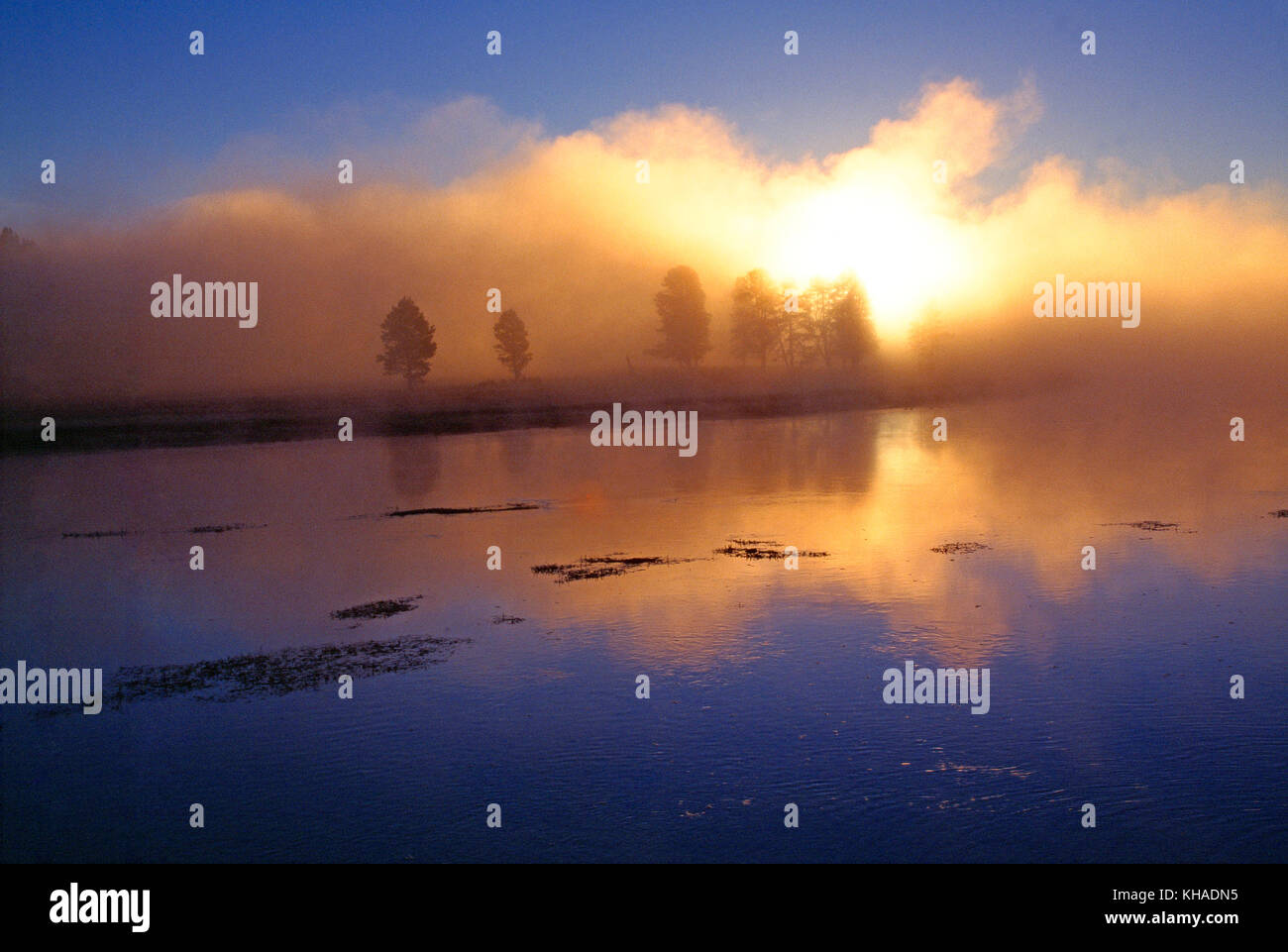 Ee.Uu. wyoming. El parque nacional de Yellowstone. Misty amanecer sobre alum Creek. Imagen De Stock