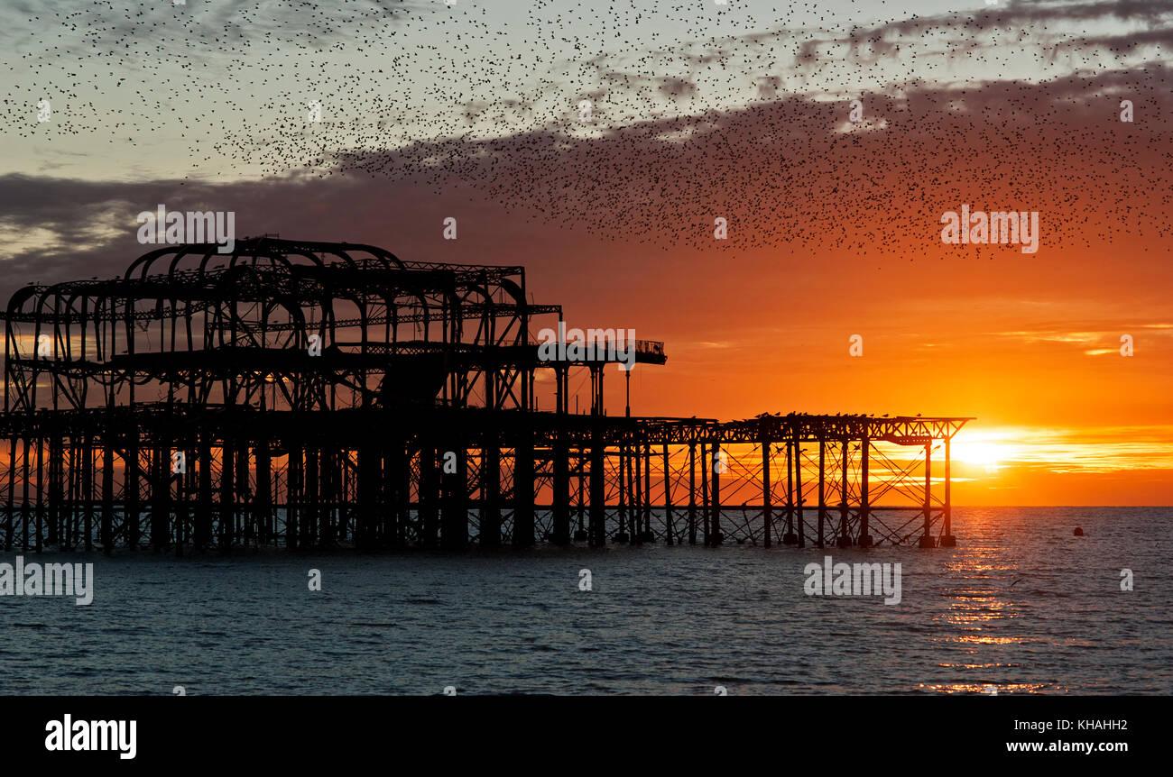 Murmuration sobre las ruinas del West Pier de Brighton, en la costa sur de Inglaterra. Una Bandada de estorninos arremete en una misa en el muelle al atardecer. Foto de stock
