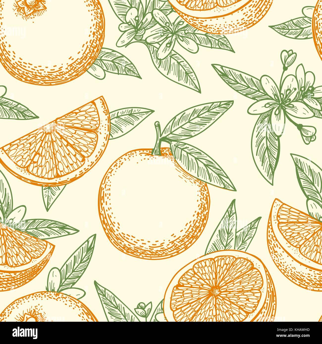 Fruta Naranja Patron Dibujado A Mano Amarillo Naranjas Hojas
