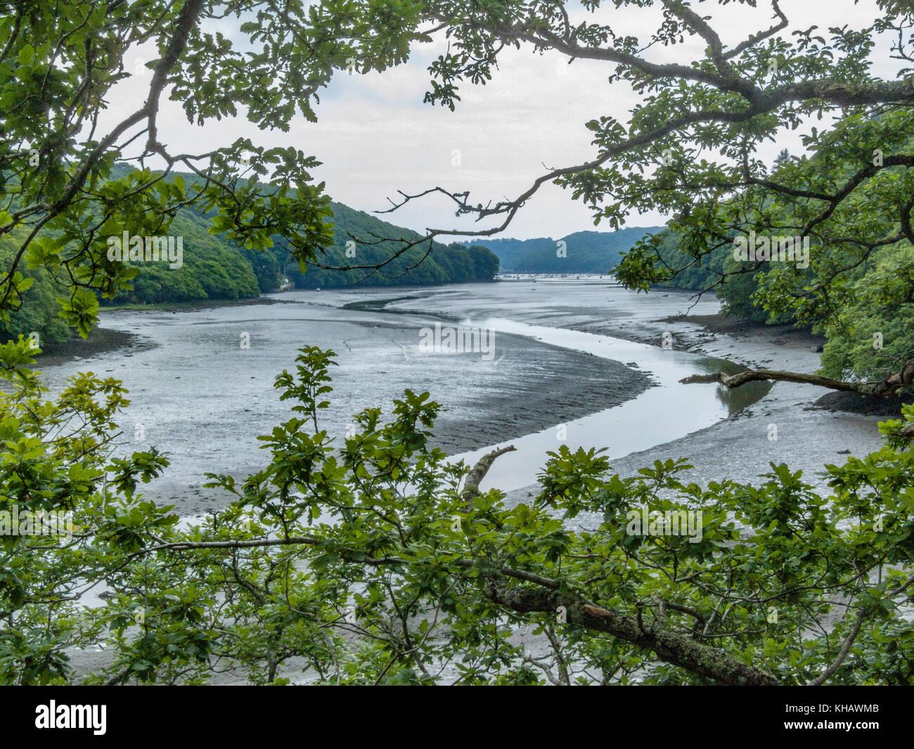 Río Lerryn / Lerryn Creek, un afluente del río Fowey (se une al río  principal en parte distante de la imagen). Aldea de Lerryn a la parte  trasera de la ...