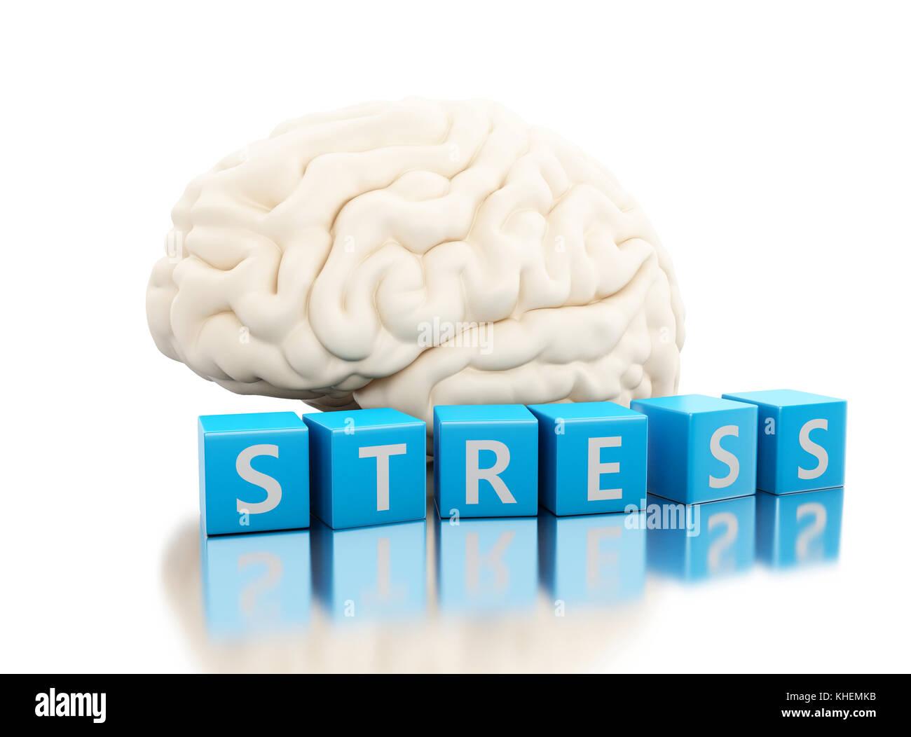 Ilustración 3d. El cerebro humano con la palabra estrés en cubos. La ...