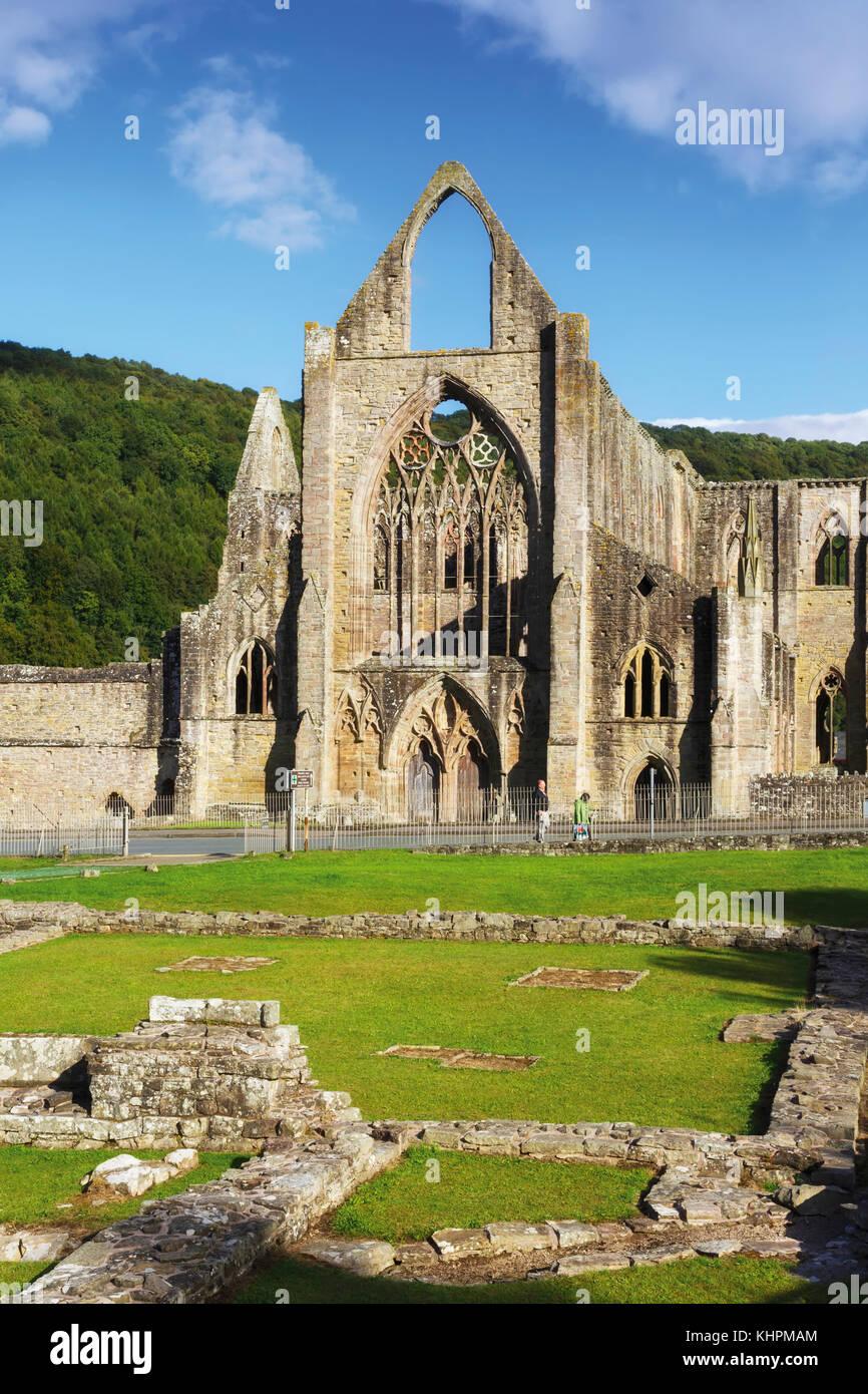 La ABADÍA DE TINTERN, Monmouthshire, Gales, Reino Unido. La abadía fue fundada en 1131. Imagen De Stock