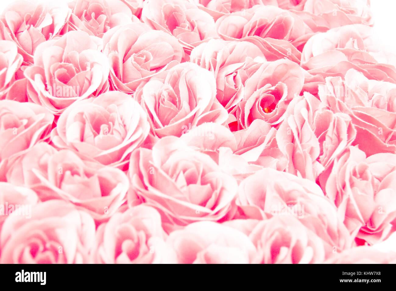Colorido Rosa Rosa Flores Para Bodas Concepto De Fondo Abstracto