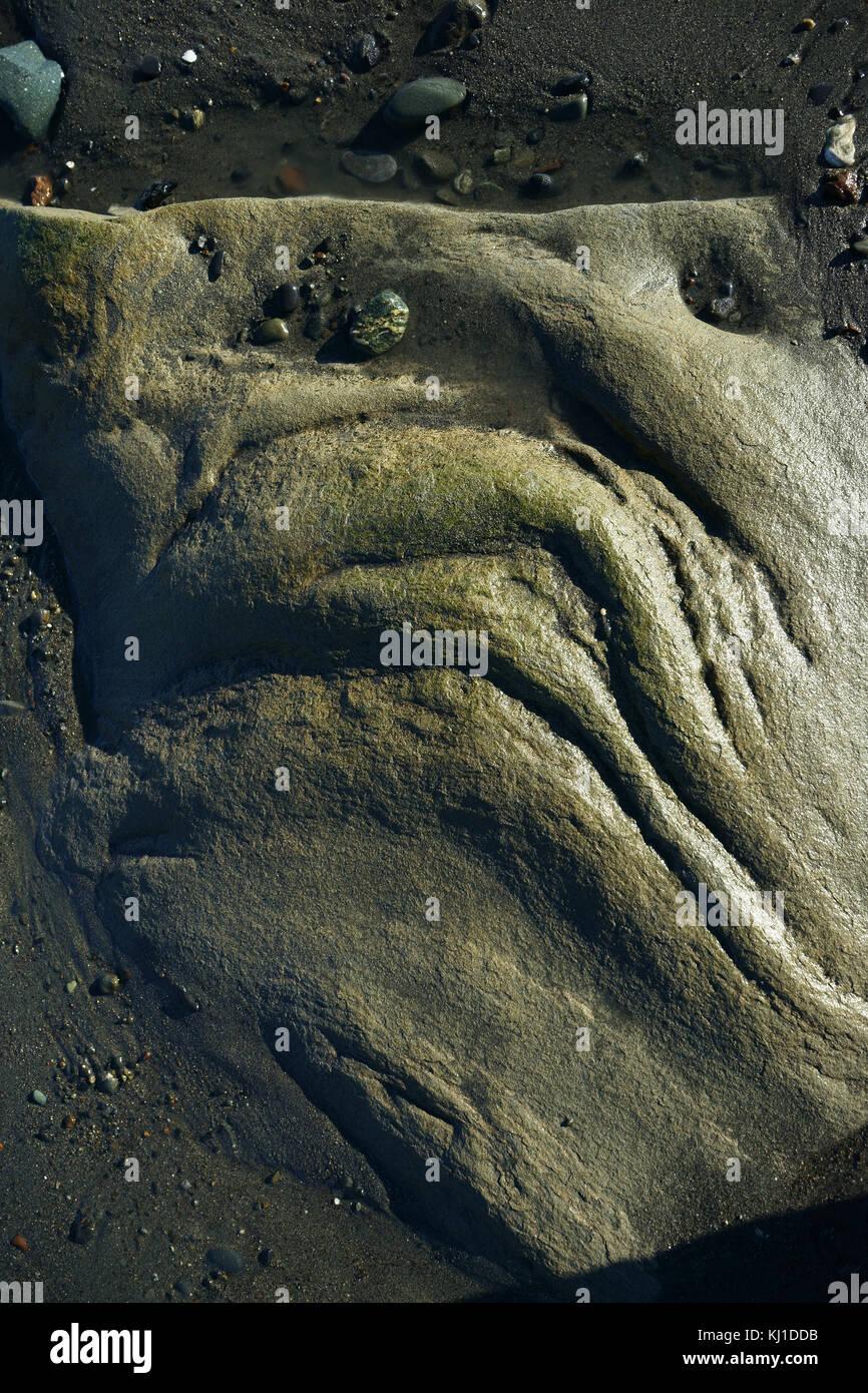 Boulder en roca erosionada distorsionado el rostro como mueca en la playa de marea de Cook Inlet, la Península Imagen De Stock