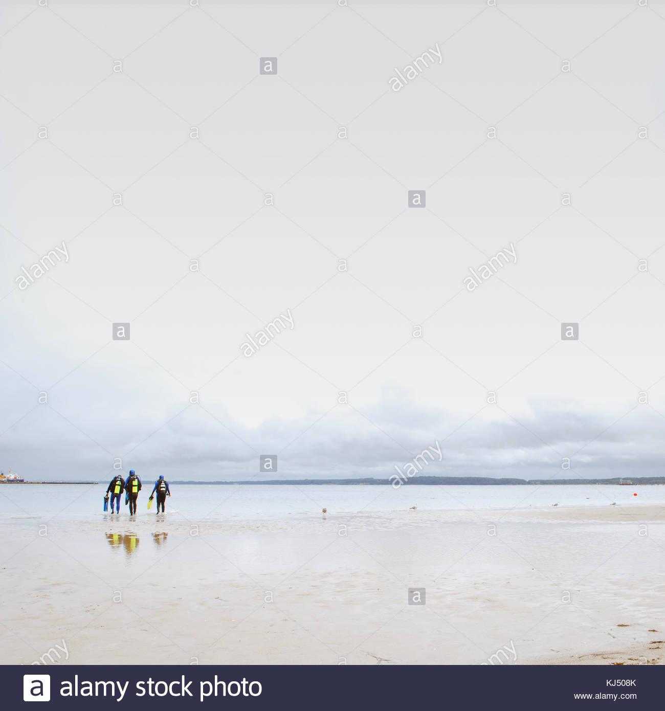 Tres nadadores, entrando en el mar Imagen De Stock