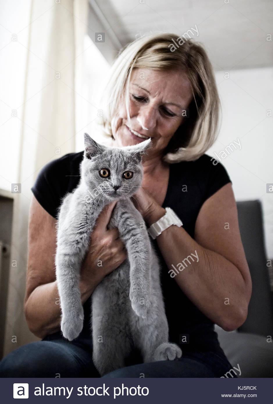 Mujer sosteniendo cat. Imagen De Stock