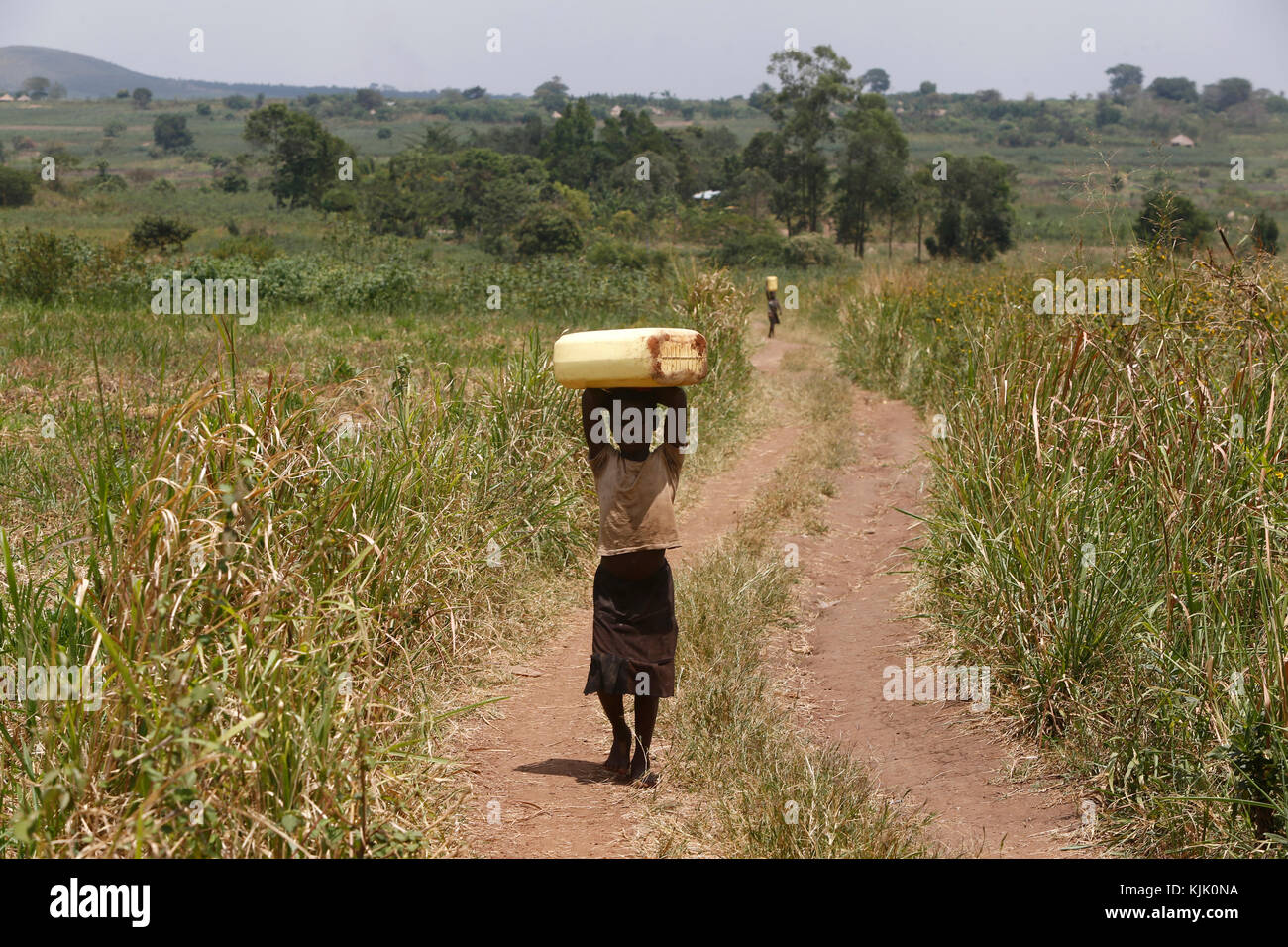 Niños ugandeses a acarrear agua. Uganda Imagen De Stock