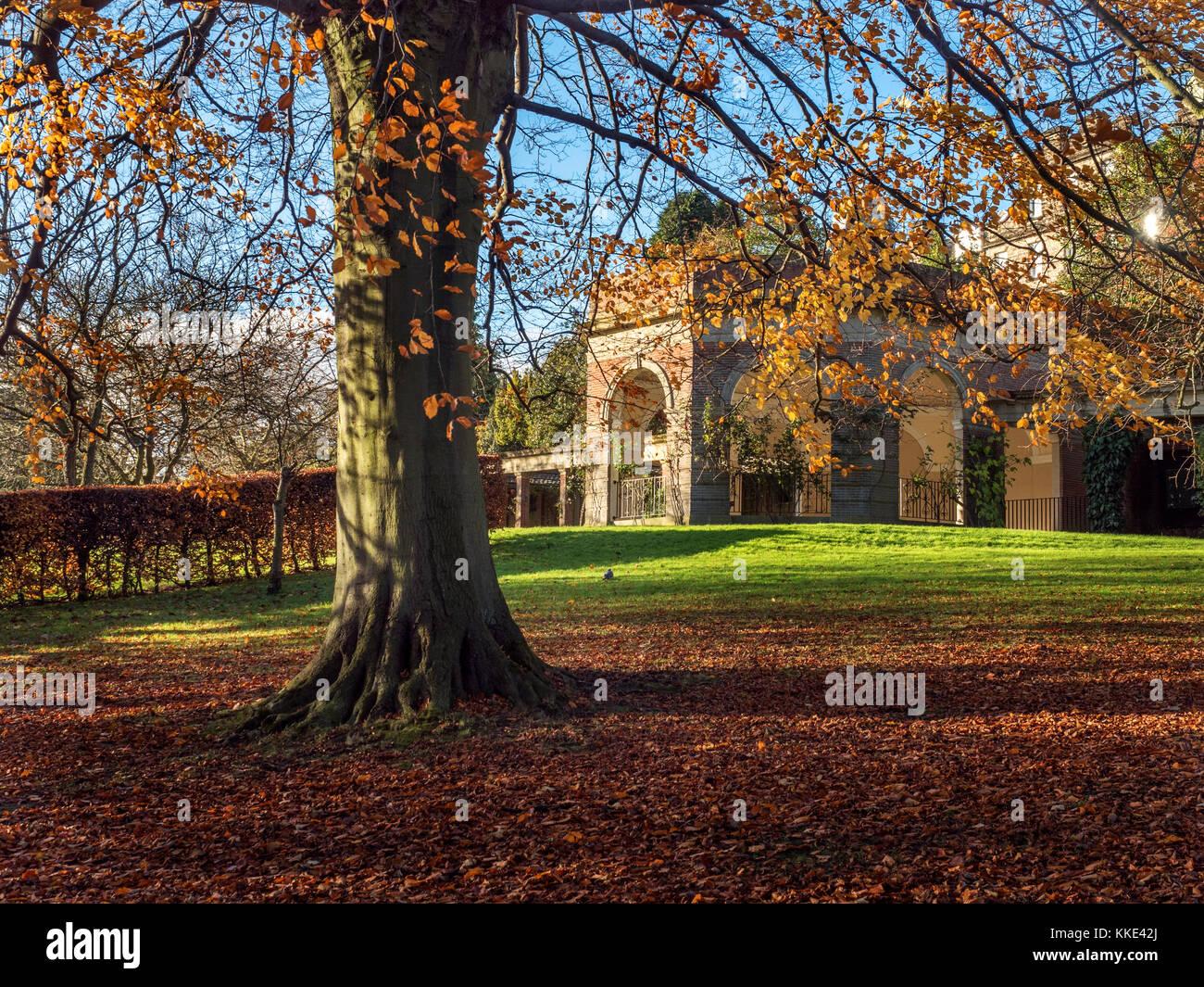 La Terraza De Sol Y Un árbol Otoñal En Jardines Del Valle De