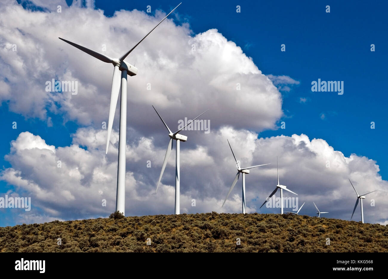 Estados Unidos parque eólico energía renovable con el espectacular cielo. Imagen De Stock