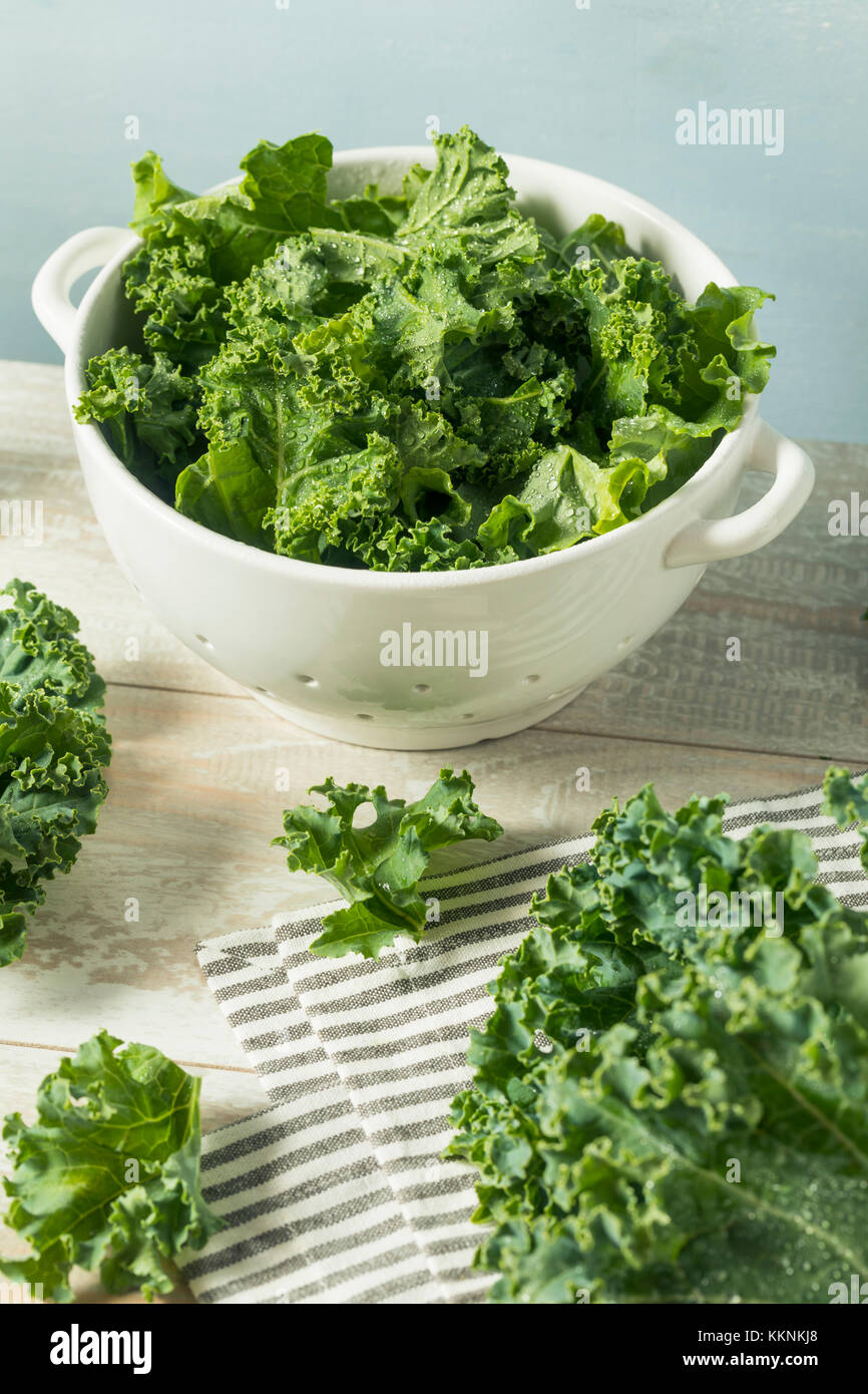 Materias orgánicas verde col rizada en un tazón Imagen De Stock