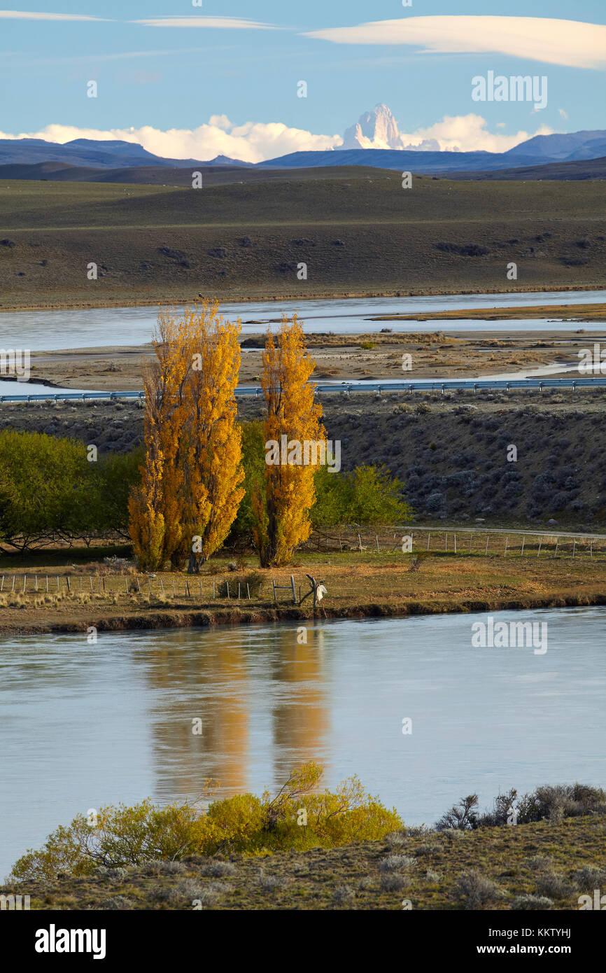 Álamos y río La Leona, Patagonia, Argentina, Sudamérica Foto de stock