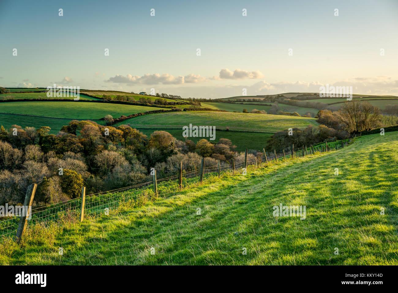 Una escena otoñal a través de rolling cornish cultivables, una valla teniendo su ojo a través de campos de hierba y árboles hacia la costa en el sol de la tarde. Foto de stock