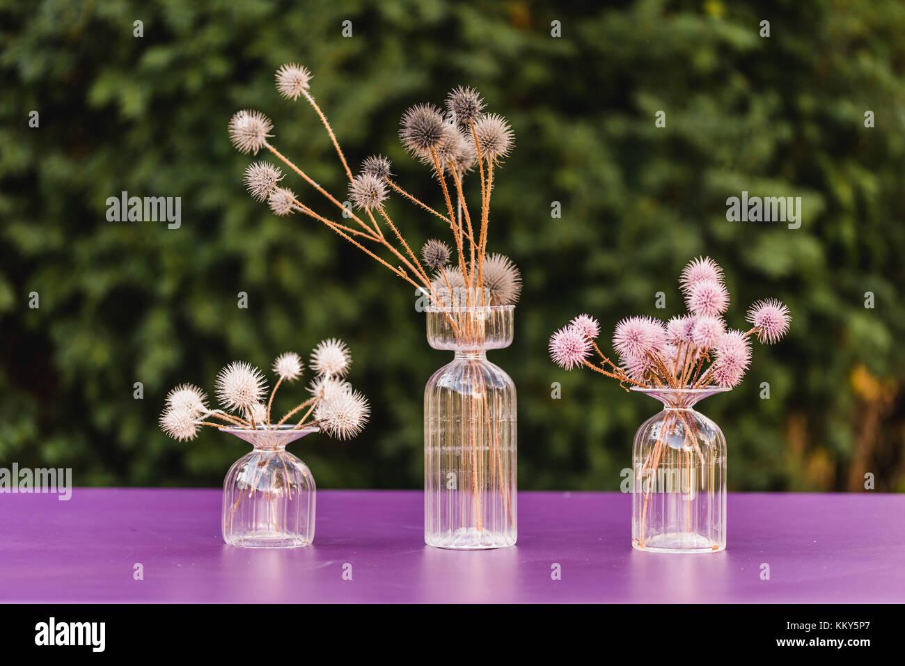 Decoracin de la mesa Floreros de cristal Globe cardos coloreado