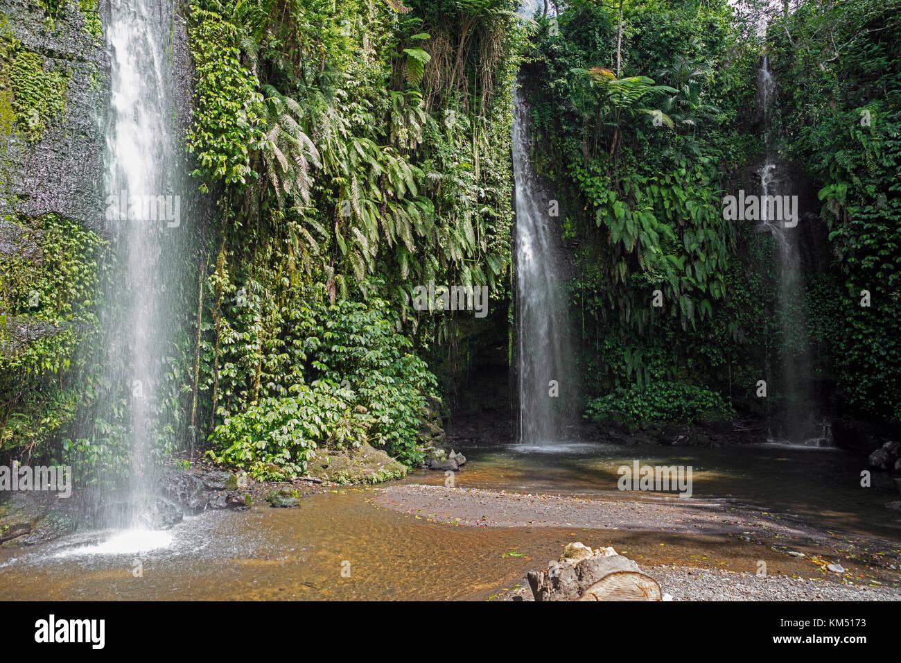 Benang kelambu cascadas en el bosque tropical cerca de la aldea de aik berik, norte, central batukliang Lombok, Imagen De Stock