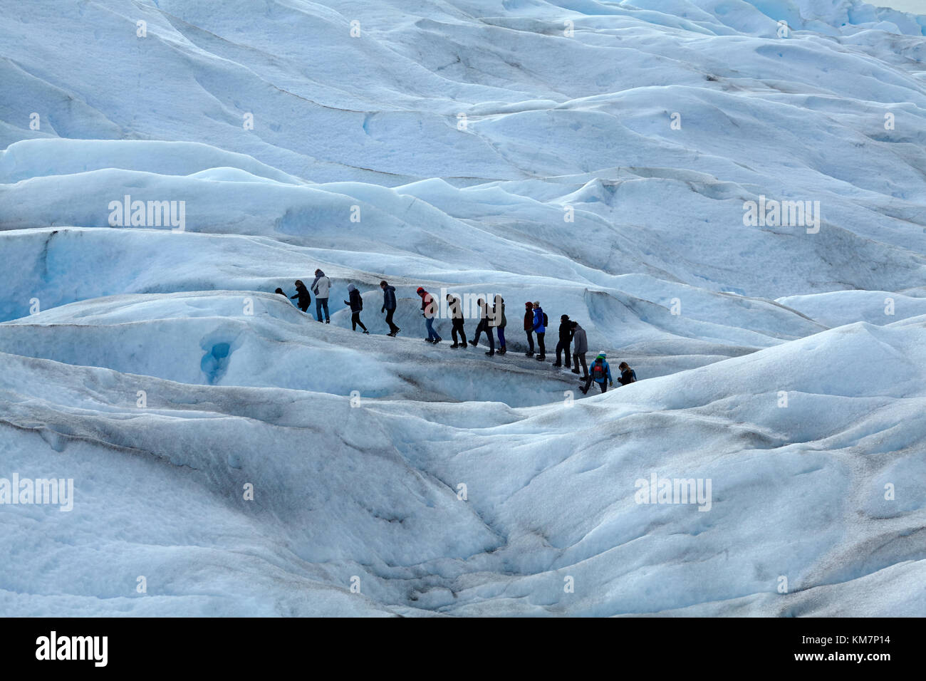 Los excursionistas en el glaciar perito moreno, parque nacional Los Glaciares (Zona patrimonio de la humanidad), Imagen De Stock
