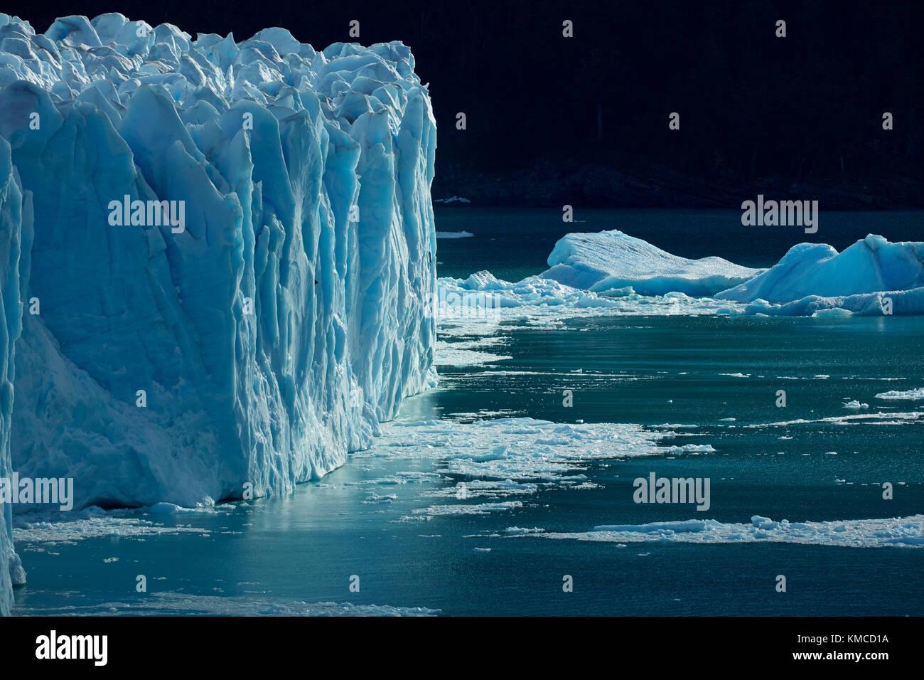 Cara terminal del glaciar Perito Moreno y el lago Argentino, el parque nacional Los Glaciares (Zona patrimonio de la humanidad), Patagonia, Argentina, Sudamérica Foto de stock