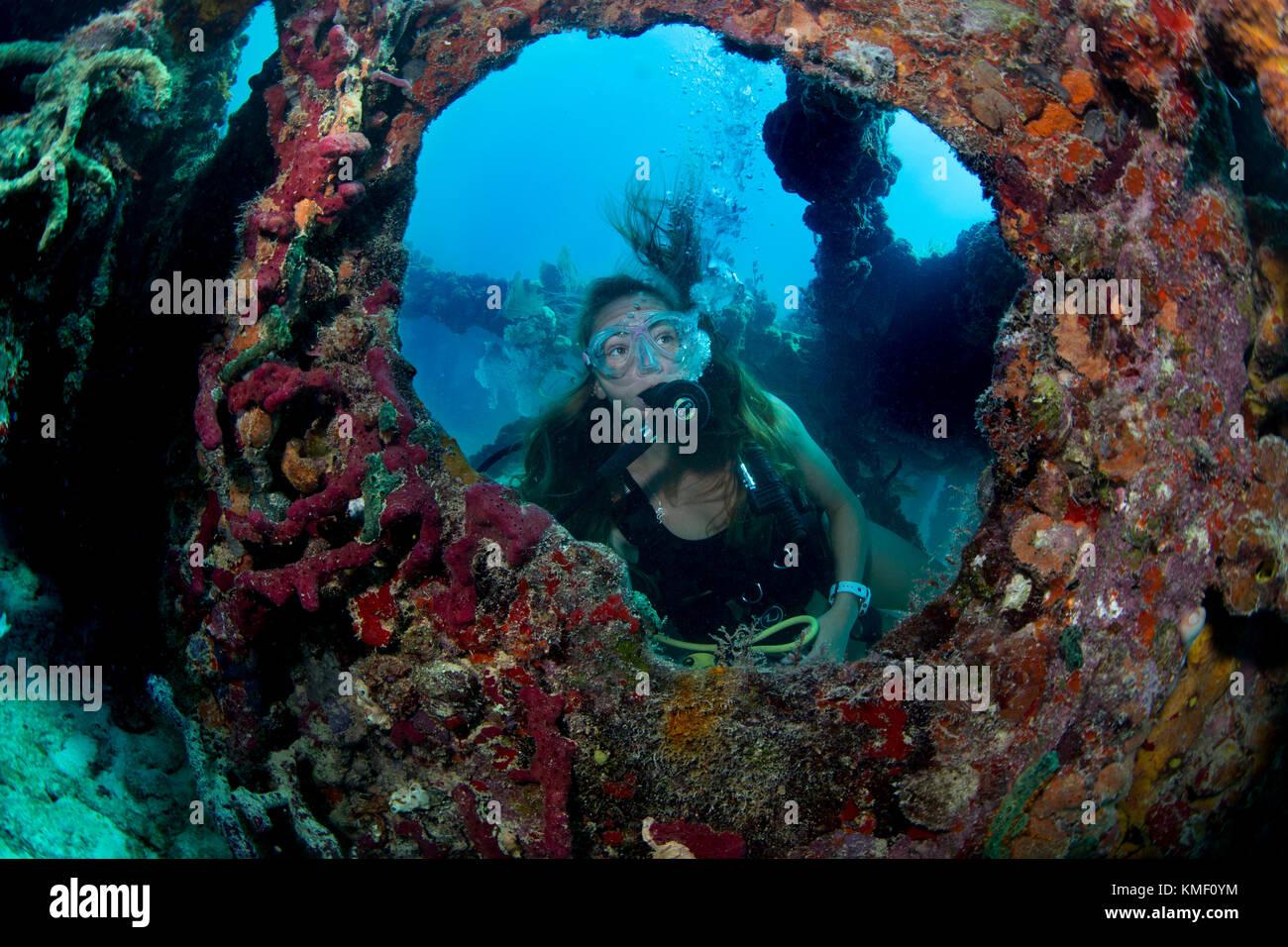 Scuba Diver explora las ruinas de Flagler's Barge. Foto de stock