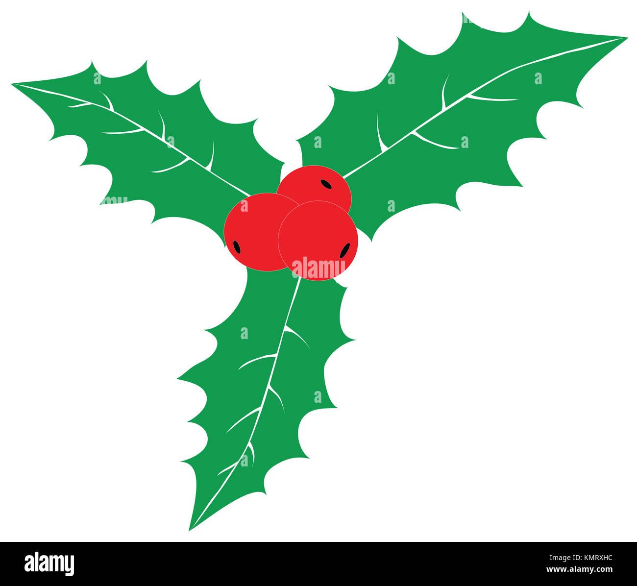 Navidad rojo bayas de acebo con hojas verdes aislado sobre fondo blanco. Ornamento tradicional de Navidad iconos Imagen De Stock