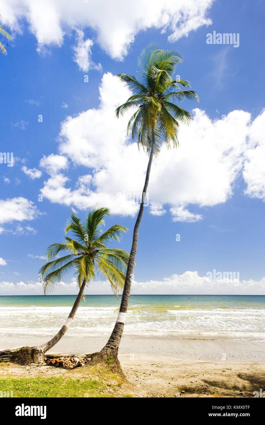 Rockly Bay, Tobago Imagen De Stock