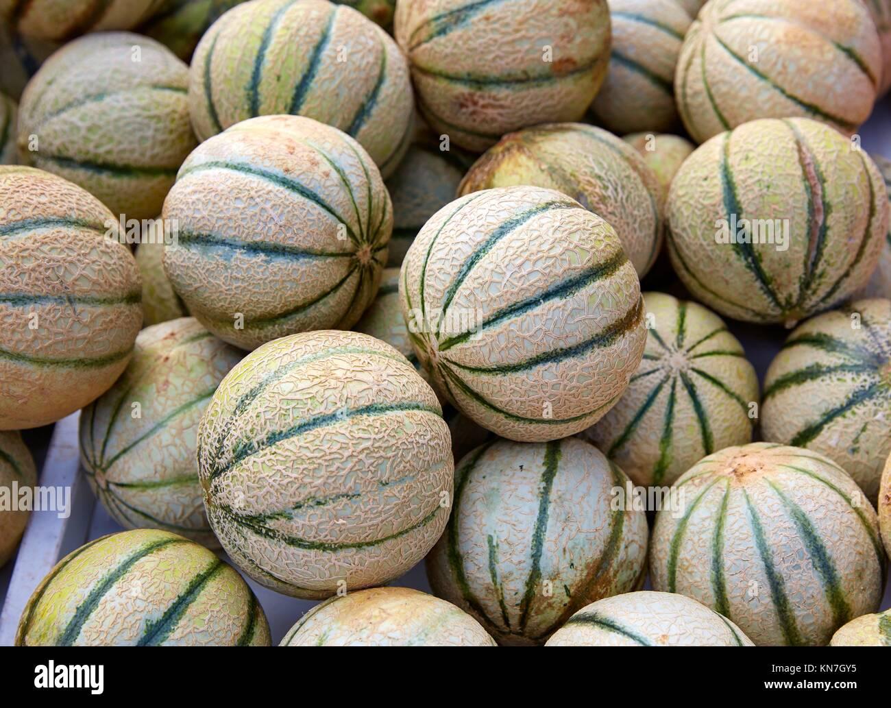 Melón Cantaloupe apilados en el marketplace. Imagen De Stock