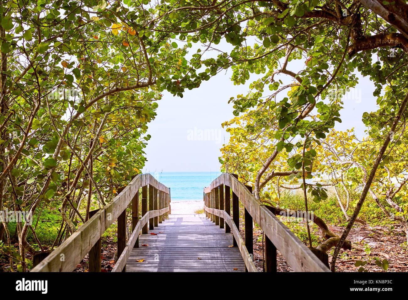 Florida Bahía bonita Barefoot Beach Walk forma EN ESTADOS UNIDOS. Imagen De Stock