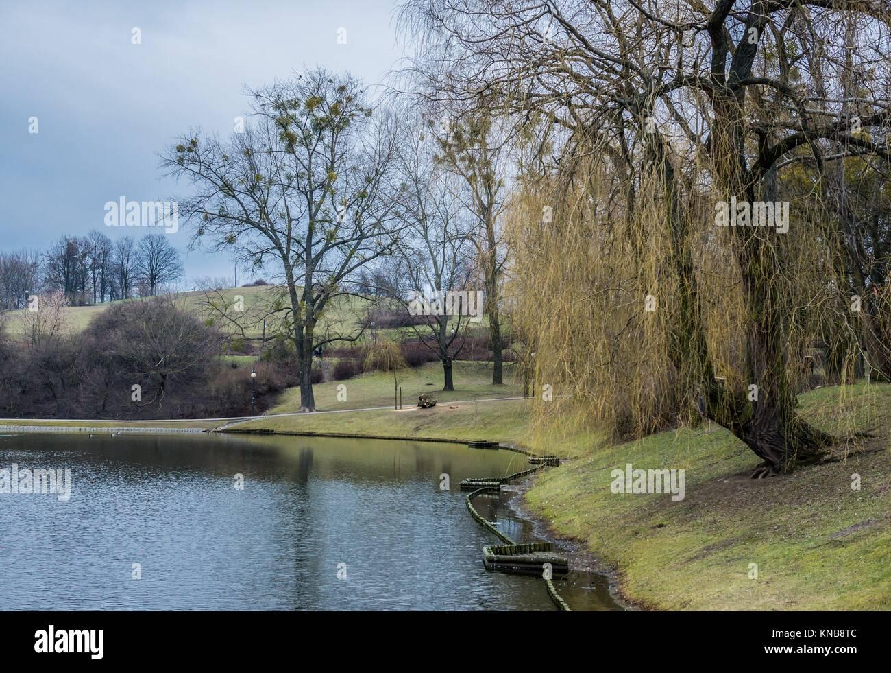 Pond Moczydlo Park en la ciudad de Varsovia en Polonia. Imagen De Stock