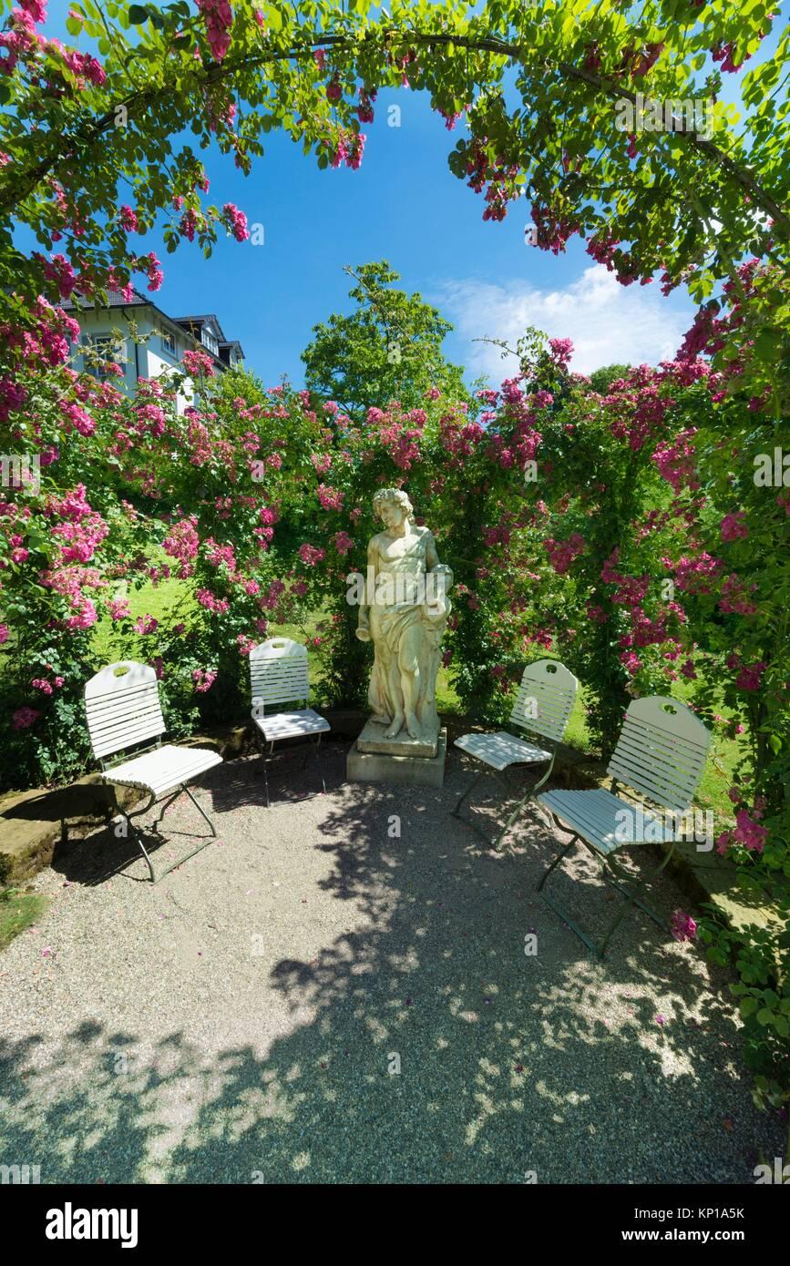 Arcos de rosas en el jardín de rosas en el Beutig ...