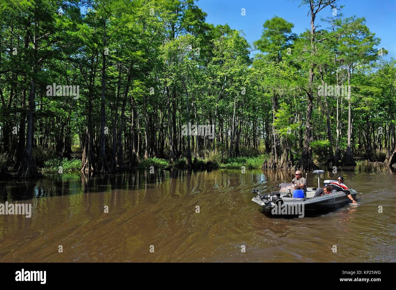 Viaje en bote a motor sobre un ciprés revestidos de canal del río Neches remanso, Beaumont, Texas, Estados Imagen De Stock